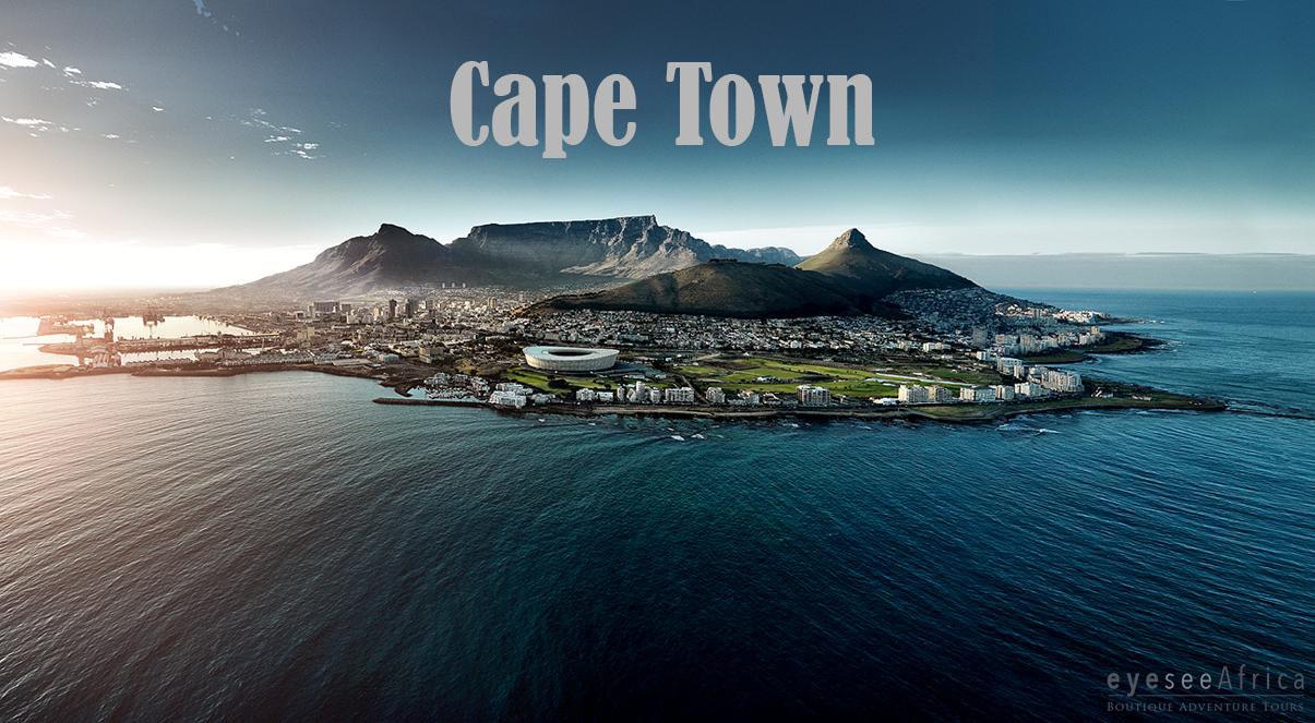 local meet cape town