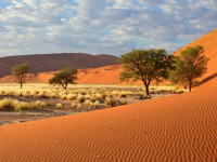 10 things you did not know about Namibia