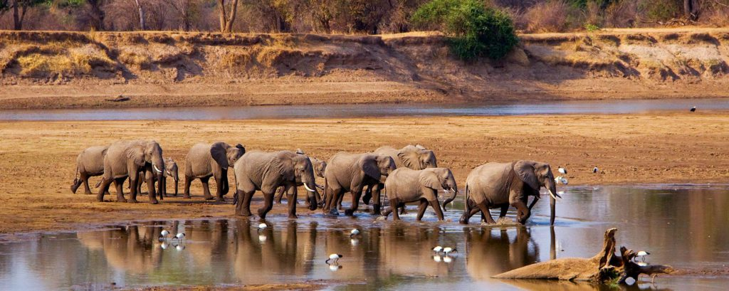 Zambia Travel Blog